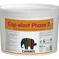 Cap-elast Phase 2-W
